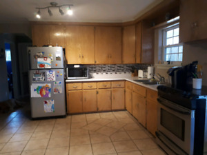 3 bedroom, 1 bathroom house for sale - Second Falls NB