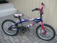 Girls Bike - 20 Inch wheels