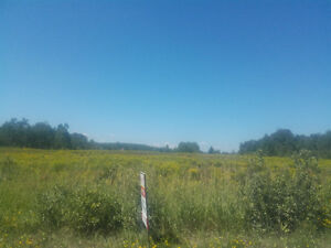 12 acres for sale Burks falls