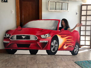 Mural Painter, Interior and Exterior Painter