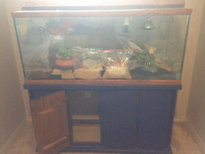 Terrarium and Aquarium