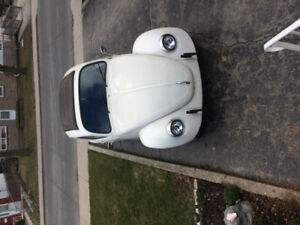 1977 VW Beetle for sale