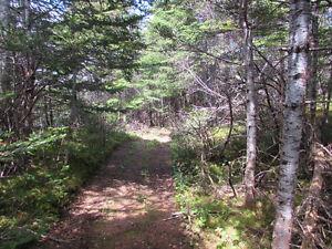 12 ACRE RIVERFRONT ESTATE…181 SALMONIER LINE, HOLYROOD. St. John's Newfoundland image 5