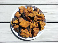 For Sale: Chaga Mushrooms - 1 lb of Chaga Chunks 454g