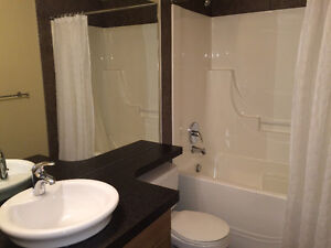 Fully Furnished Executive 2 BR Condo in ICON 1 Downtown Core Edmonton Edmonton Area image 8