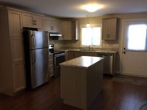 All included 1 BDRM bright, spacious basement apartment