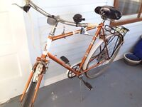 For Sale: 5 Speed Bike