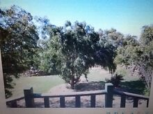 Lifestyle/Business opportunity!! Springton Barossa Area Preview