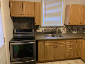Kitchen Cabinets, Sink, Faucet, and Counter