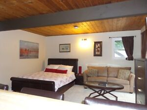 Alpine Village Resort Fir Studio Shuswap / Mara Lake