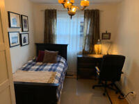 Homestay for student