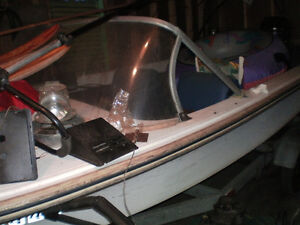 Mercury motor and fiberglass boat