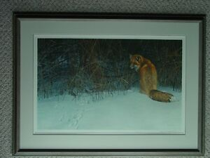Red Fox On The Prowl print by Robert Bateman
