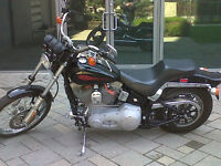 2002 Harley Davidson Softail for sale