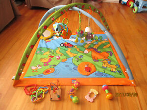 Baby Toys and Play Mat