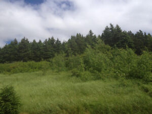 Ocean view property located in Harcourt mins from Clarenville!