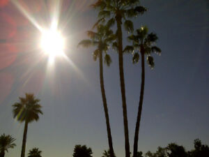Tired of the cold? Vacation in sunny Mesa Az.