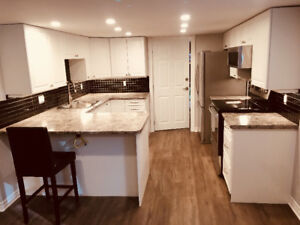 New 1 bedroom basement apartment in a great location.