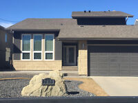 Stucco, Painting and Repairs