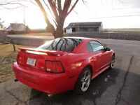Ford Mustang Rouge 2004 V6 3.9 L 40e Anniversaire