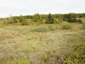 LAND at Mad Rock - Bay Roberts, NL - MLS# 1131965 St. John's Newfoundland image 6