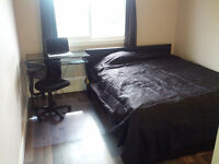 Nice furnished room for rent