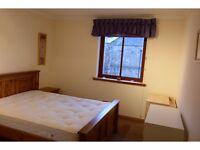 Room to let in city centre