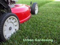 Urban Gardening - Lawn Mowing - Hedge Trimming - Garden Maintenance