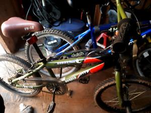 Boys like new bike