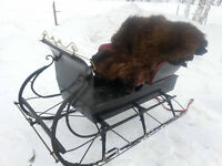 Sleigh Catherine a vendre / for sale