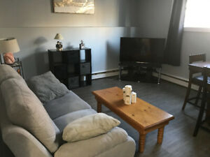 1 Bedroom Apartment For Sublet- South End Halifax