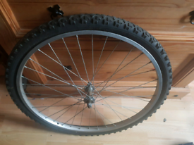 Mountain Bike front rim and tyre