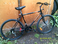 Vintage Venture Cruising/All terrain bike