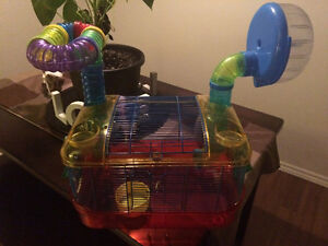 Hamster cage, great condition!! Cambridge Kitchener Area image 1