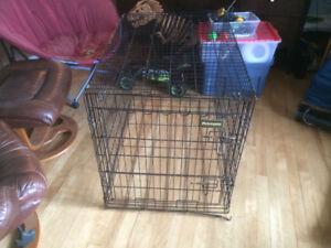 Grosse Cage pour Chien - Big Dog Cage