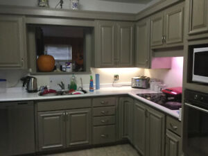 Refinish kitchens, bathrooms, cabinets and furniture