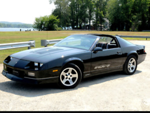 Lookin for a muscle car ( camaro /trans am)