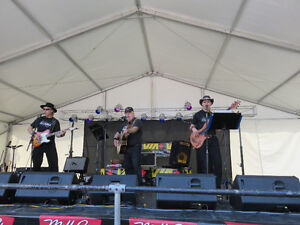 The Ozarks Country Band London Ontario image 1