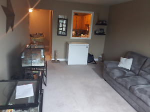 2 bedroom apartment - lease take over