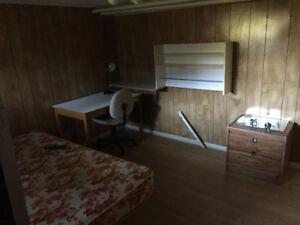 Chambre à louer - 360$