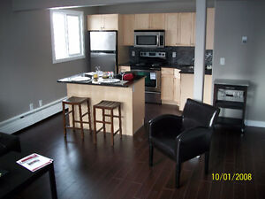 Delightful modern fully equipped downtown condo Nov1
