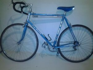 Classic Raleigh Professional