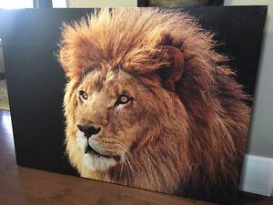 BIG LION FRAME