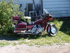 Needs a Rider