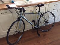 Ladies Trek road bike