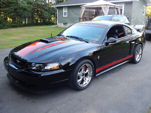 2003 Ford Mustang Other