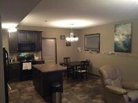 BEAUTIFUL BASEMENT SUITE FOR RENT IN VANIER WOODS