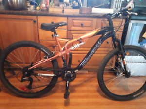 21speed full suspension mountain bike