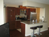 Gorgeous Furnished 2 bedroom Condo For Rent in Downtown