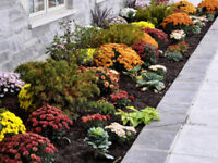 Landscaping, tree removal, Eavestrough, garden clean upCOBOURG